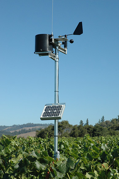Weather monitoring station equipment perched above the vineyard canopy