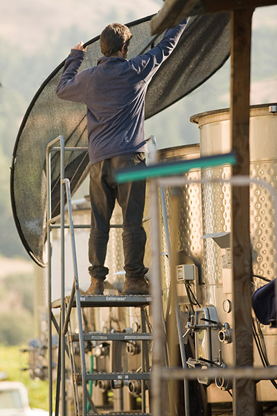 A winery worker throwing a mesh net on top of stainless steel fermentation tank.